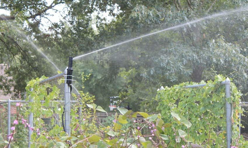 free-flow-irrigation-north-shore