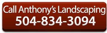 anthony-phone