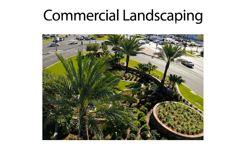 anthonys-commercial-landscaping