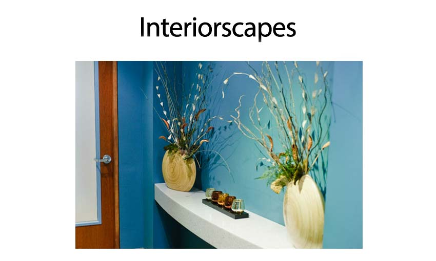anthonys-interiorscape-2